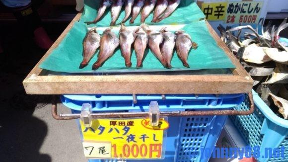 厚田漁港のハタハタ