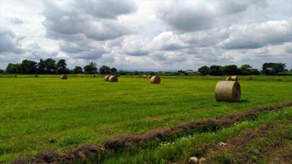 いわきのある長沼町の風景