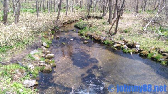 ポロトの森キャンプ場の小川