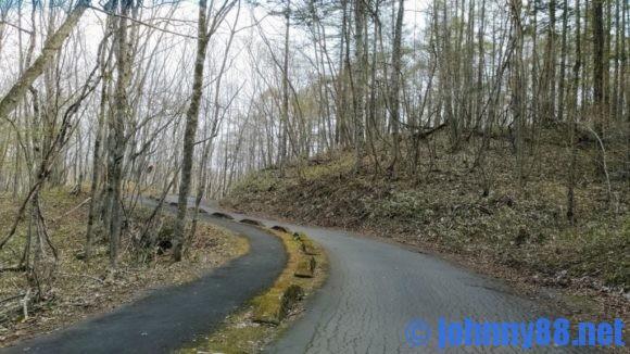 ポロトの森キャンプ場に通じる道