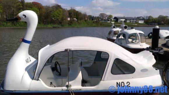 鶴沼公園キャンプ場のスワンボート
