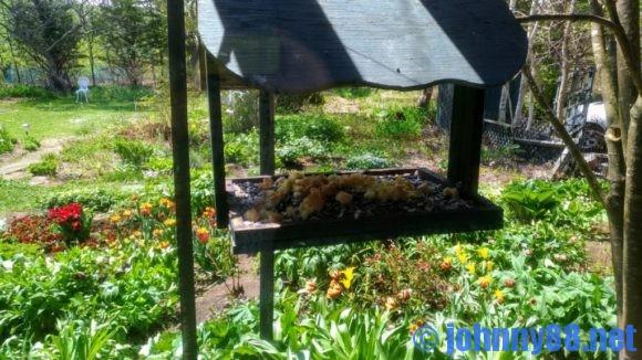 スウィートグラスの巣箱