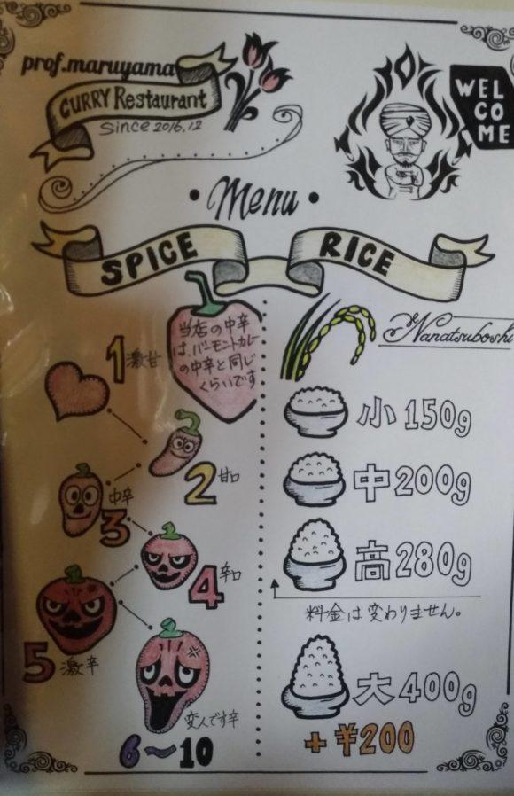 【カレー専門店】円山教授。のライスの量