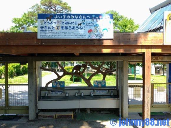 円山動物園のこども動物園