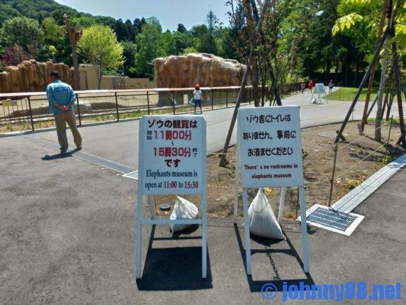 円山動物園のゾウ舎開放時間