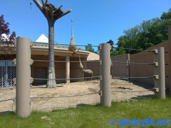 円山動物園のゾウ舎