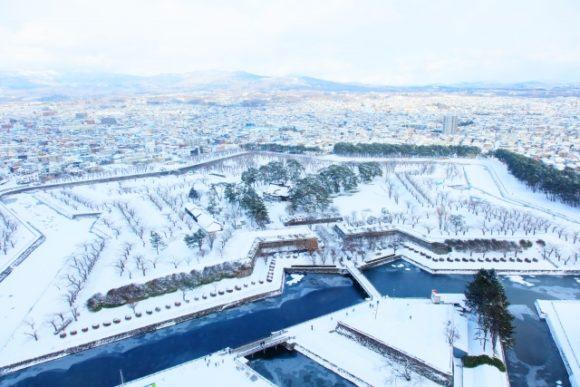 冬の五稜郭公園
