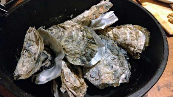 産直牡蠣×牛ステーキ2種食比べ豊西牛&アンガス牛 全8品