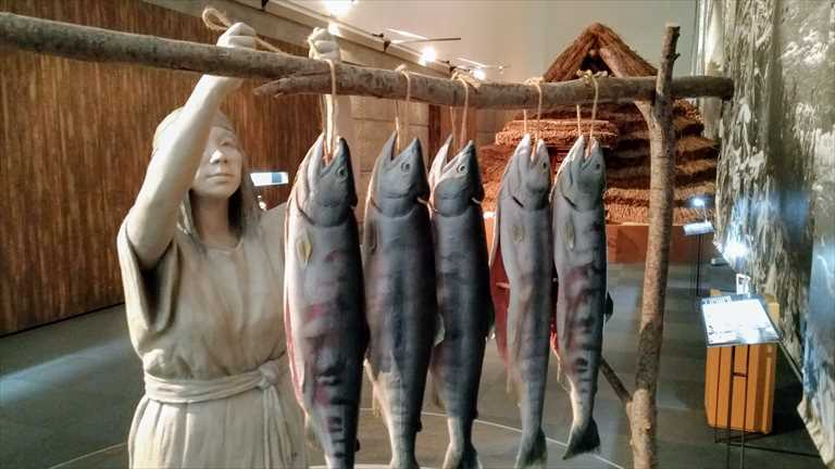旭川市博物館のおすすめアイヌ文化展示