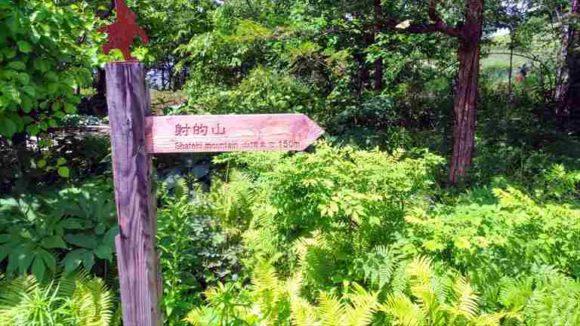 射的山(上野ファーム)