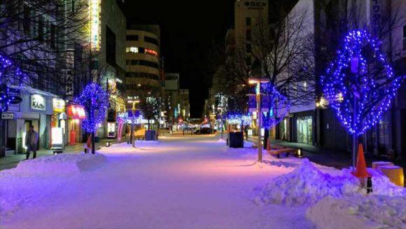 冬の旭川平和通買物公園