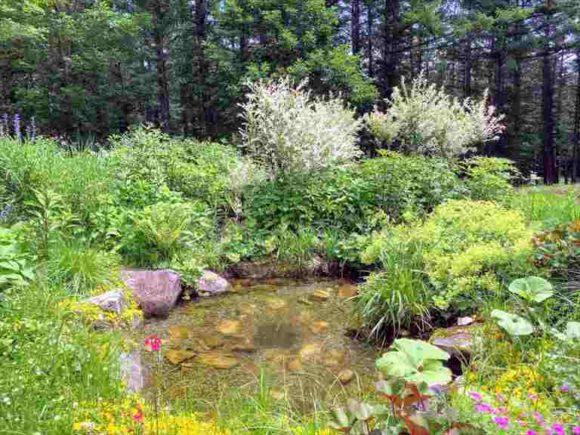 季節ごとに開花する花の配色を踏まえて、変化する庭が楽しめるよう工夫
