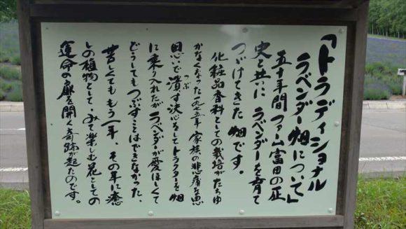 ファーム富田のトラディショナルラベンダー畑