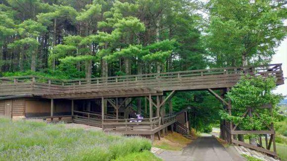 ファーム富田の「森の舎」
