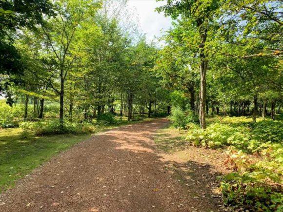六花の森散策路