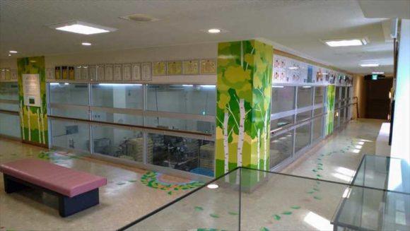 柳月スイートピア・ガーデン店の工場見学(2階)