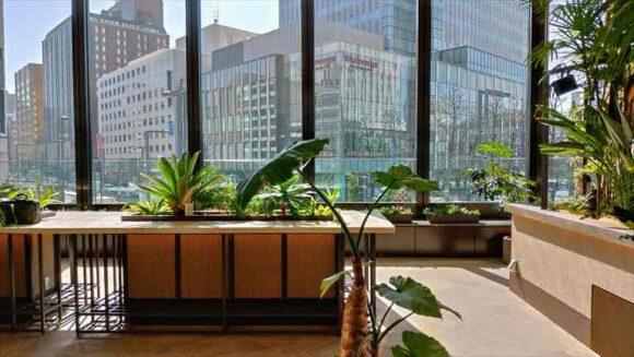 ミレド2階の空中庭園icoi Lounge イコイラウンジ