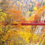 二見吊橋 の紅葉