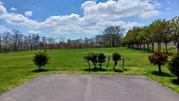 古山貯水池自然公園オートキャンプ場のフリーサイトB