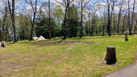 古山貯水池自然公園オートキャンプ場のフリーサイトA