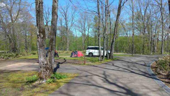 古山貯水池自然公園オートキャンプ場のカーサイト