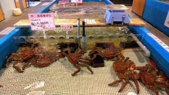 札幌場外市場のカニ