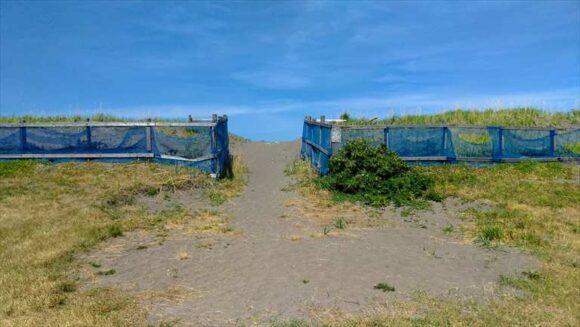 浜益川下海浜公園キャンプ場のフリーテントサイト