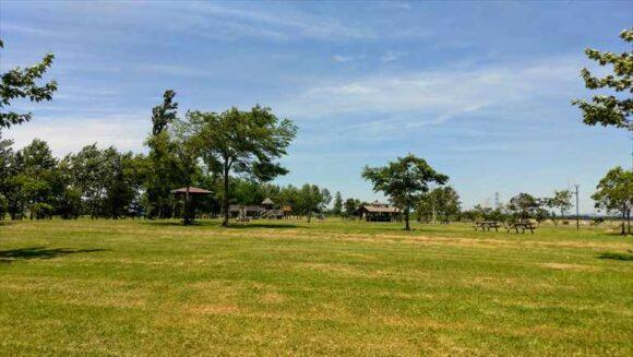 三重緑地公園キャンプ場のフリーサイト