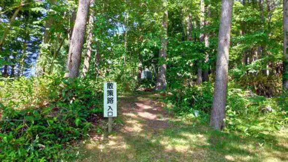 北広島市自然の森キャンプ場内にある散策路